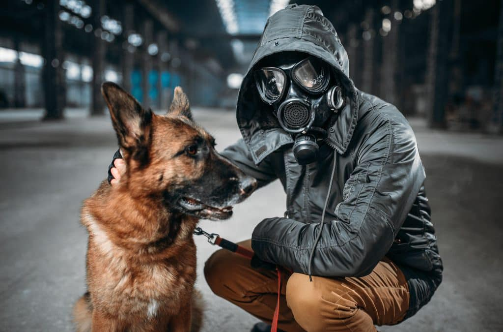 Dogs and Vaping – The Dangers of Nicotine